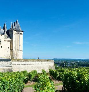 Formation vins du Val de Loire