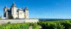 Connaître les vins de la Loire Atout Ter