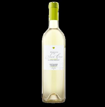 6 x Tradition Blanc - AOP Saint - Chinian 2020