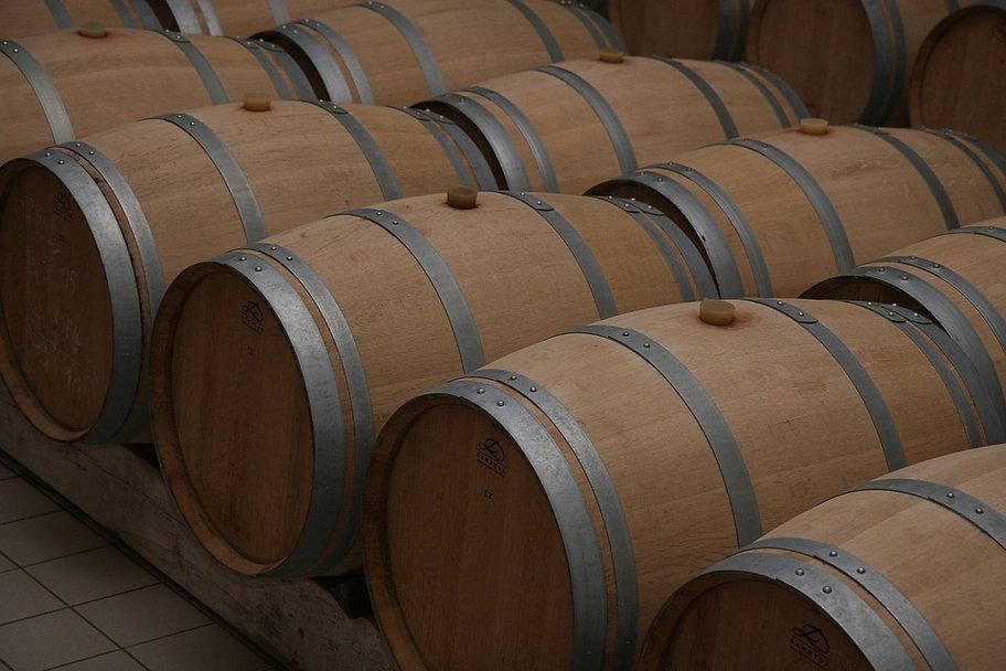 Connaître les vins de Bordeaux Atout Ter