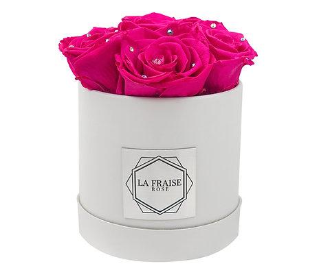 Fuchsia Diamond Rose Bucket