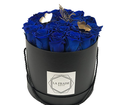 Brilliant Blue Butterfly Bucket
