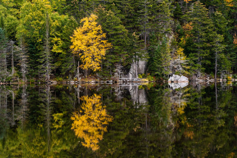 water reflection 4 (1 of 1).jpg