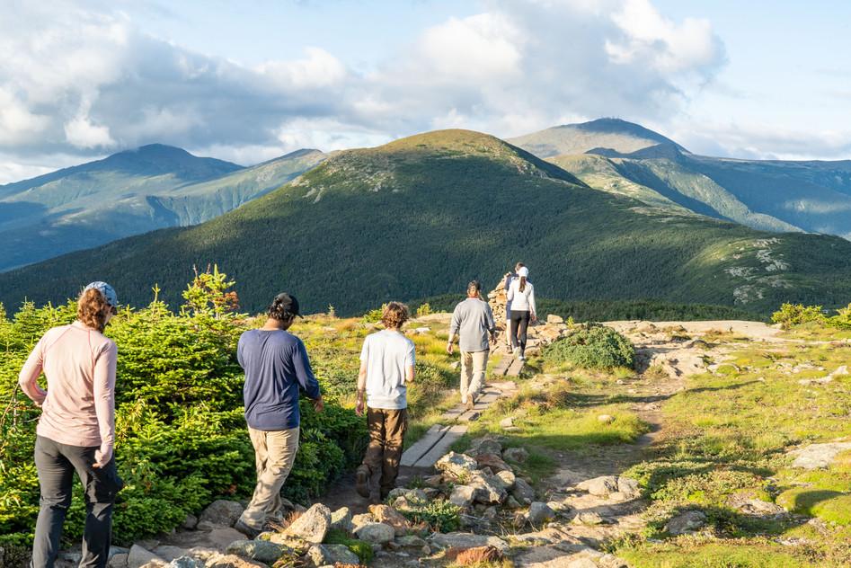 Crawford Path Sunlight, White Mountains, NH