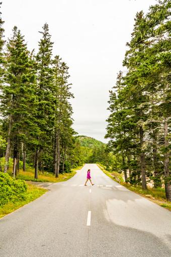 Ocean Drive, Acadia National Park, ME