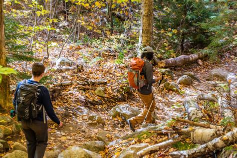 both hiking in woods (1 of 1).jpg