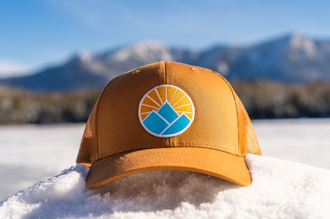 brown hat (1 of 1).jpg