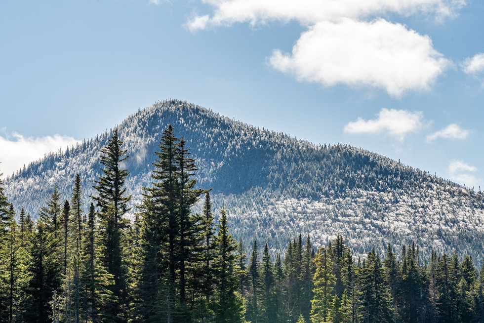 The Horn in the Snow, White Mountains, NH