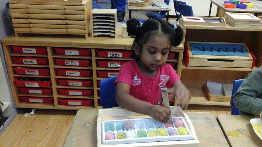 IEP - Individualised Education Plan