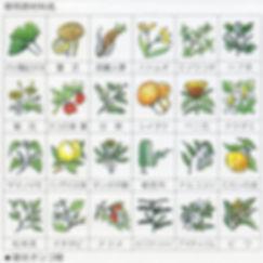 24種野草(500x500).jpg