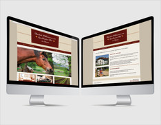webdesign-projekt-speckbacherhof-01.jpg
