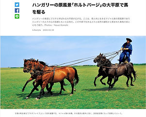 ハンガリー、マジャル族の原風景_ホルトバージの草原で馬を駆る
