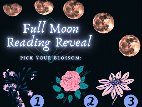 Full Moon In Virgo: Pick A Blossom For Your Twin Flame Oracle Card Reveal