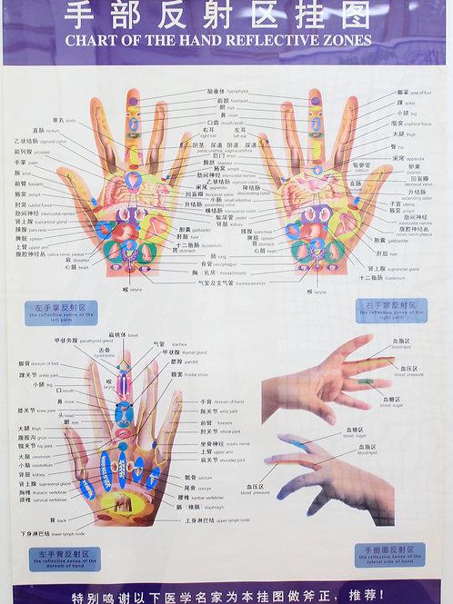 Mapa Reflexologia das mãos Chinês