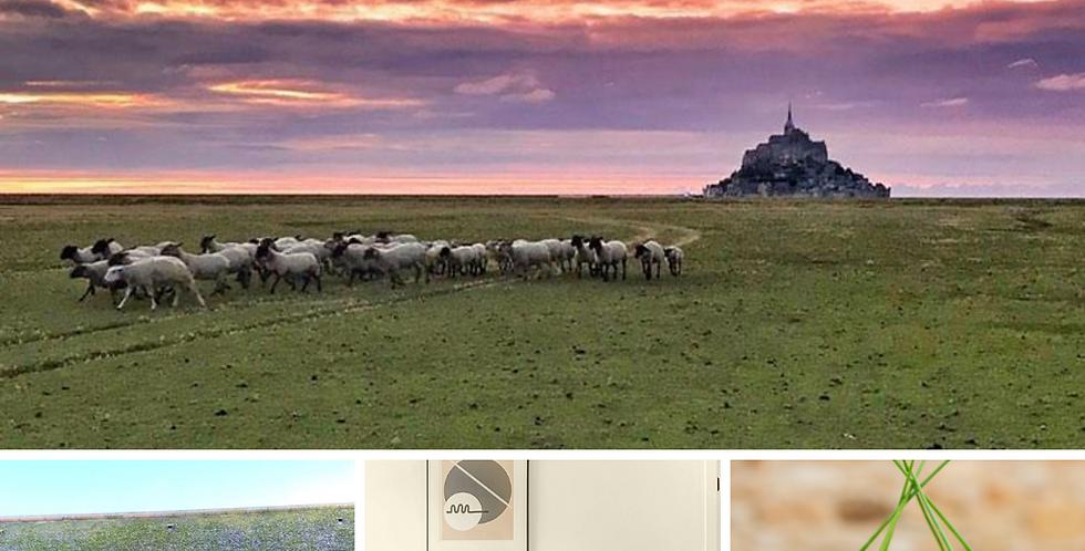 Séjour découverte du Mont-Saint-Michel - 2j / 1 nuit - 2pers