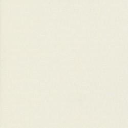 Clio - White