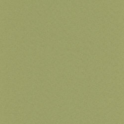 Palette - Green