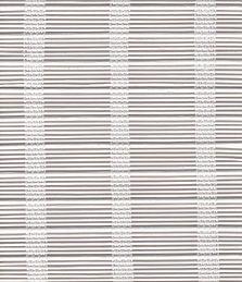 Pudong Whiter06-02.jpeg
