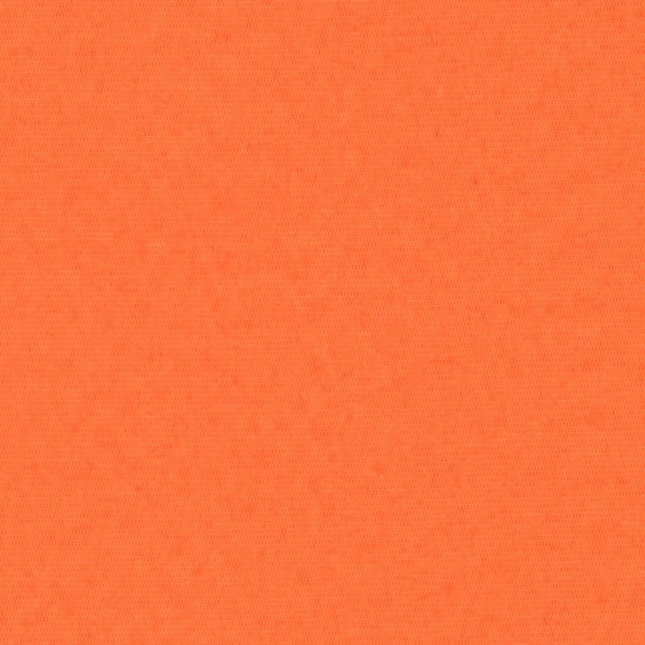 Palette - Burnt Orange
