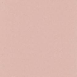 Palette - Orchid