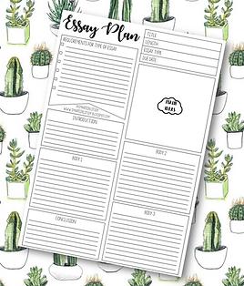 Essay Plan.png