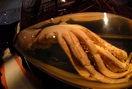Calamar gigante (Architeuthis dux) en el