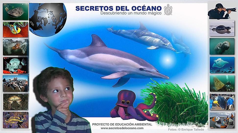 anuncio_secretos_del_océano_poster_a_co