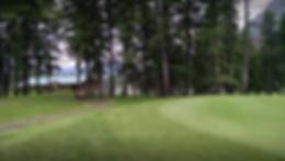 Screen Shot 2020-05-15 at 5.28.46 PM.png