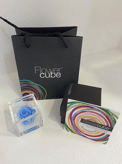 Flower cube - azzurro