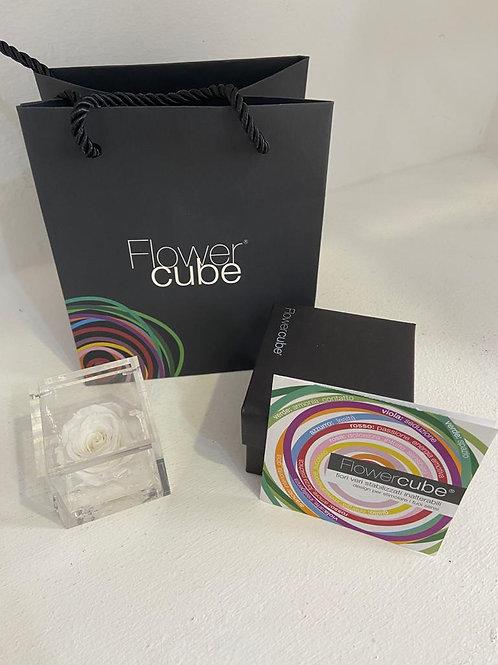 Flower cube - bianco