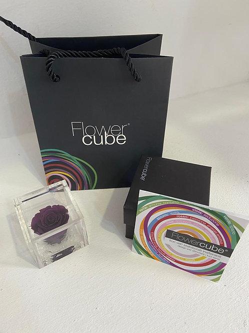 Flower cube - viola