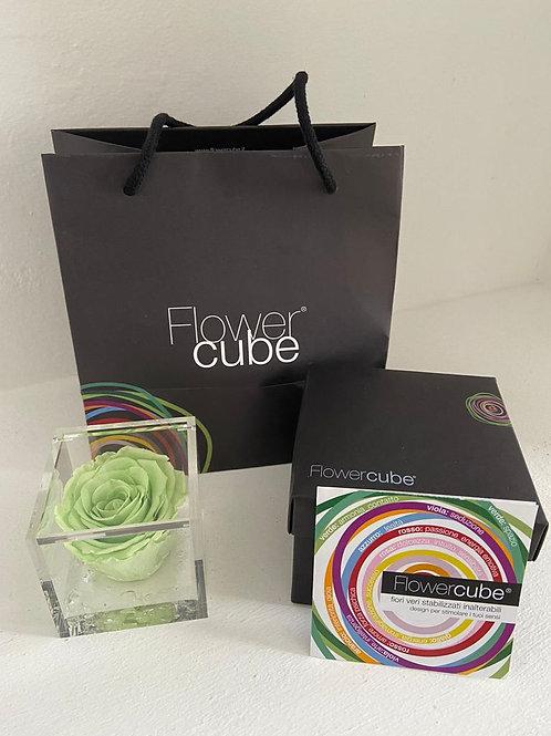 Flower cube - verde