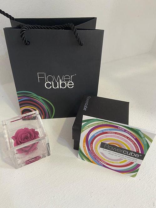 Flower cube - mirtillo