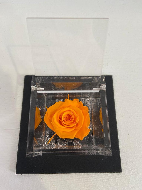 Flower cube - arancio