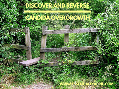 Discover and Reverse Candida Overgrowth