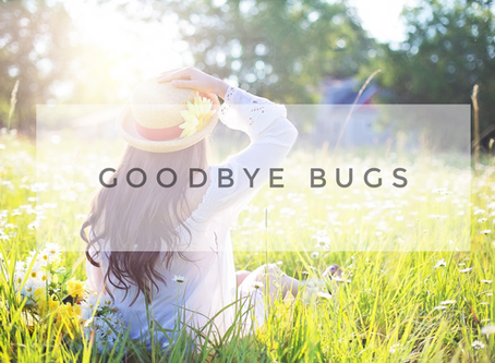 Bugs Be Gone: The Best Recipe for a Bug-Free Spring and Summer