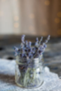lavender 1234.jpg