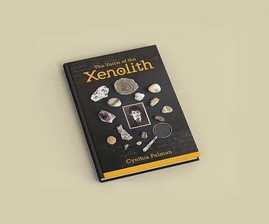 xenolith2.jpg