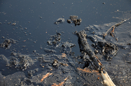 Removing Oil Spills from Water: A daunting Task