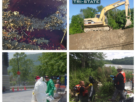 Emergency Spill Clean up and Critical Environmental Problems