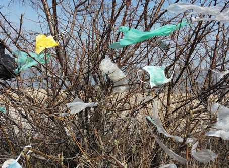 COVID-19 – Personal Protection Debris adding to parking lot clean up