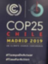 COP25 logo x400.jpg