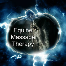 Equine Massage Therapy.jpg