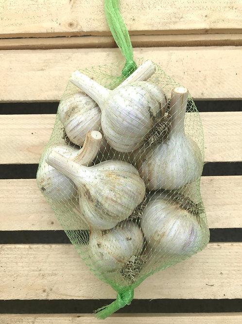 German Extra Hardy Garlic, 1 pound