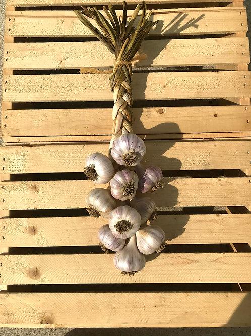 Garlic Braid