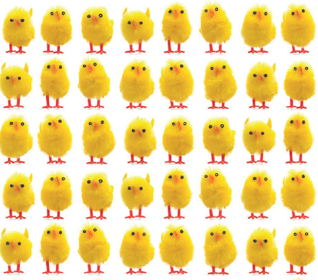 SS19_EASTER YELLOW CHICKS_REPEAT_for web