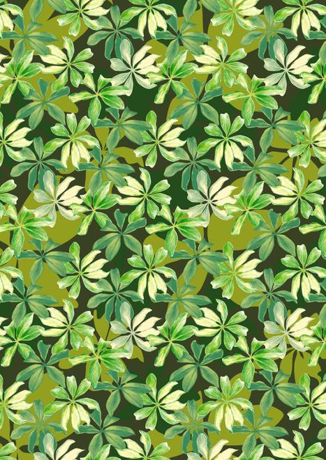150220_sketchy leaf_lo res_rgb-01.png