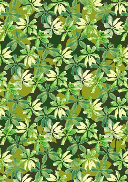 sketchy leaf
