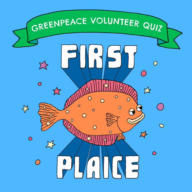 greenpeace_first_plaice_yellow_tiger-01.