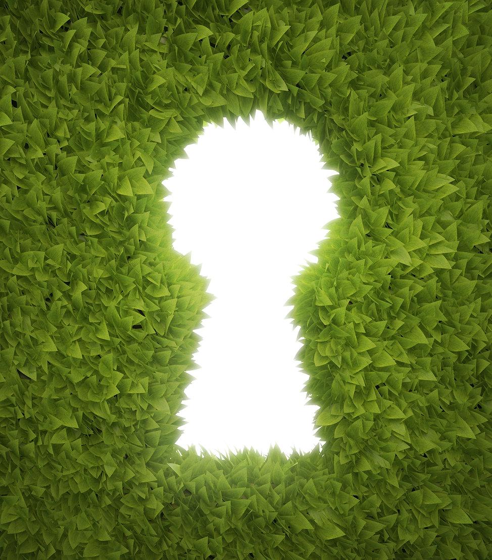鍵穴 グリーン shutterstock_117077866.jpg